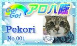 aloha-001.jpg