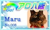 aloha-008jpg